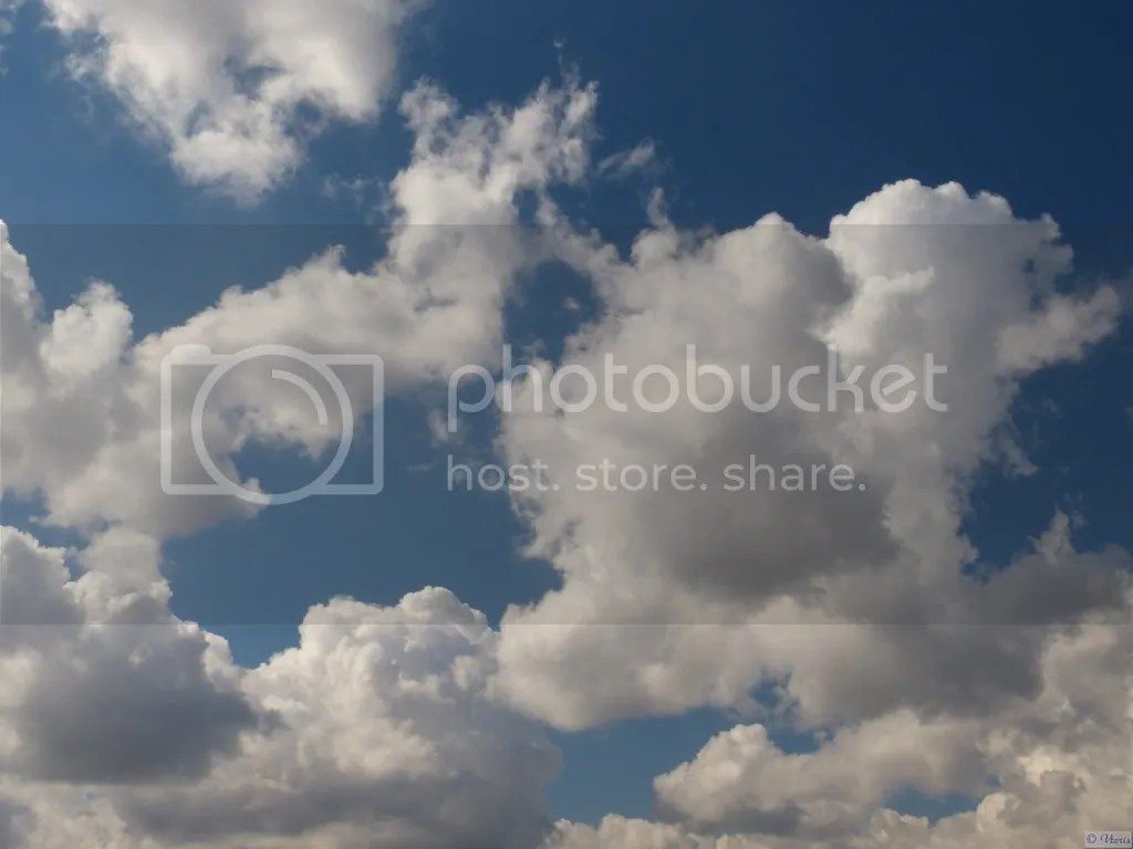 photo P2680602.jpg