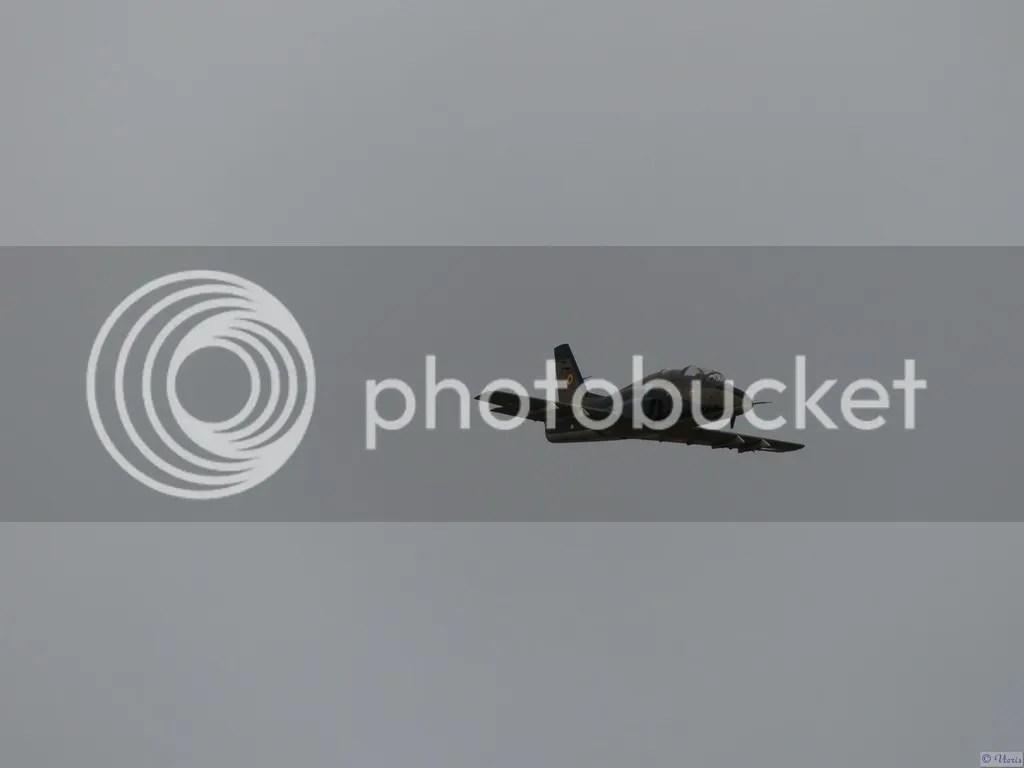 Photo P2880518.jpg