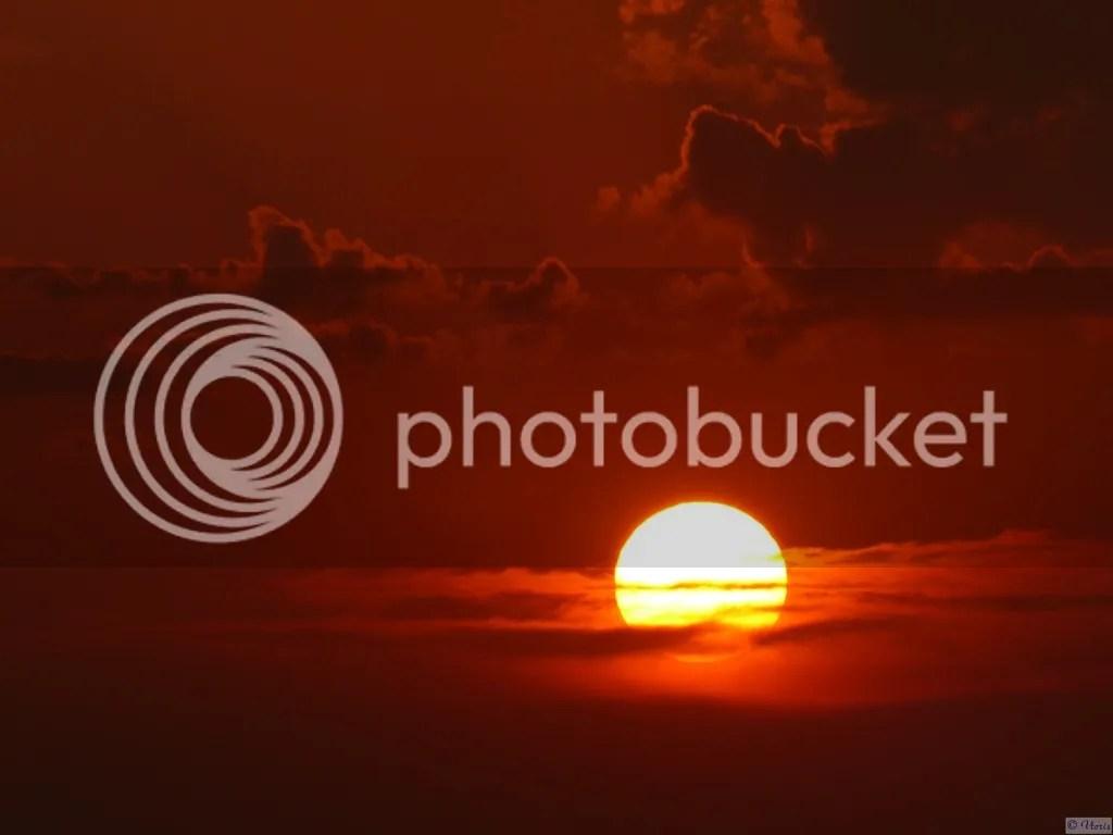 Photo P2880710.jpg