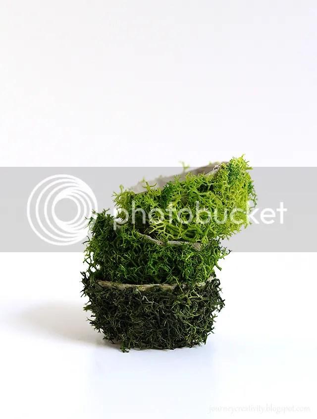 DIY Egg Carton Moss Pots