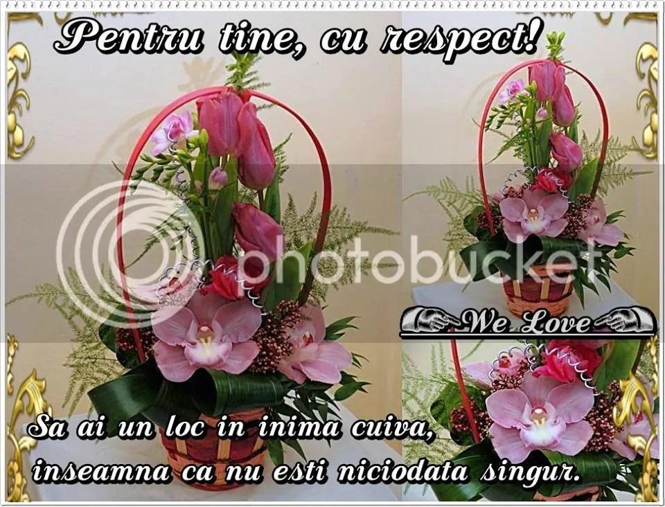 photo 11018919_542959135859876_4139118360489459580_n_2.jpg