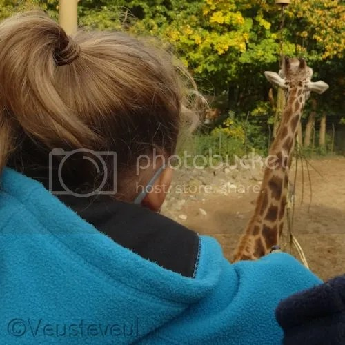 De dierentuin is vlak bij, we gaan regelmatig eventjes