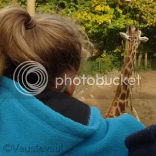 De dierentuin is vlak bij, we gaan regelmatig eventjes... blijven ziek zijn is niet leuk!