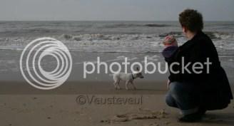 Dragen op het strand