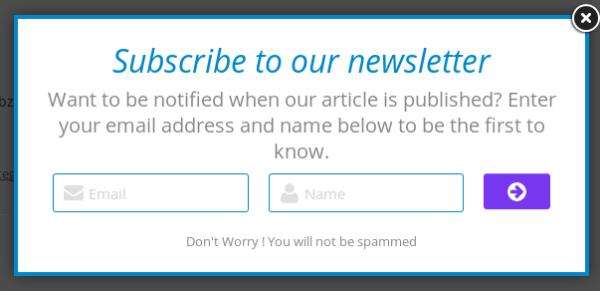 WordPress_Newsletter_Style_2