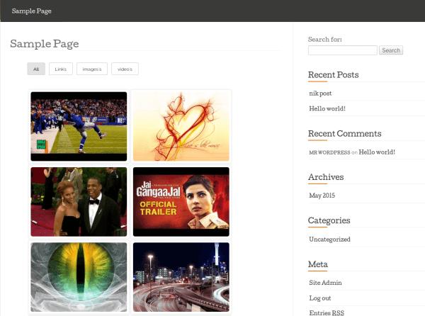 wordpress-responsive-filterable-portfolio-frontend-1