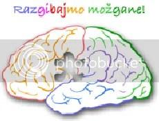 Teden možganov 2008