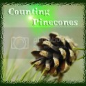 Counting Pinecones