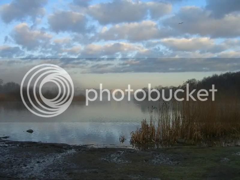Råstasjön i morgondimma