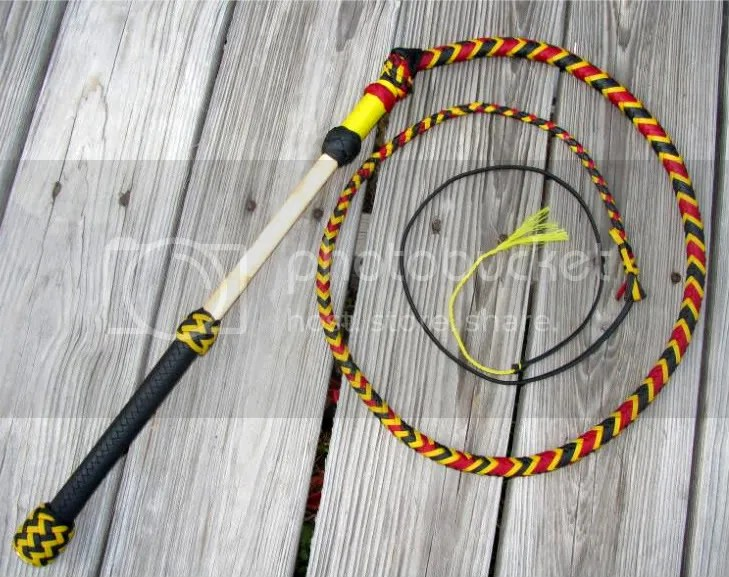 4ft Stockwhip: coral snake pattern