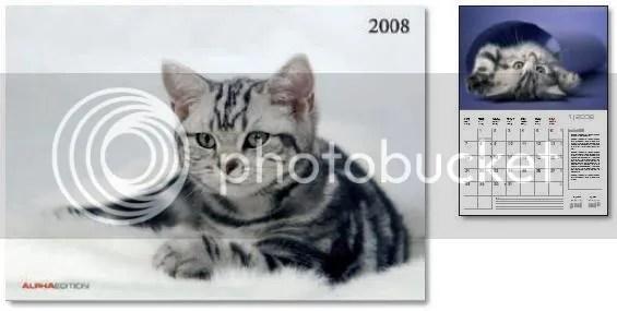 Katzen calendar (Alpha Edition)