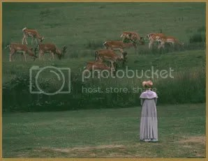 Miss Hopkins watches the deer