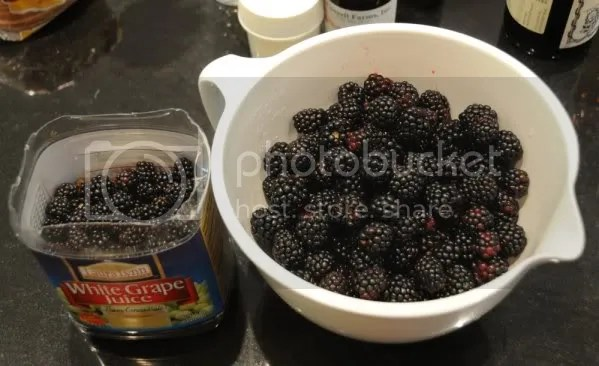 Wild  vs. Cultivated Blackberries