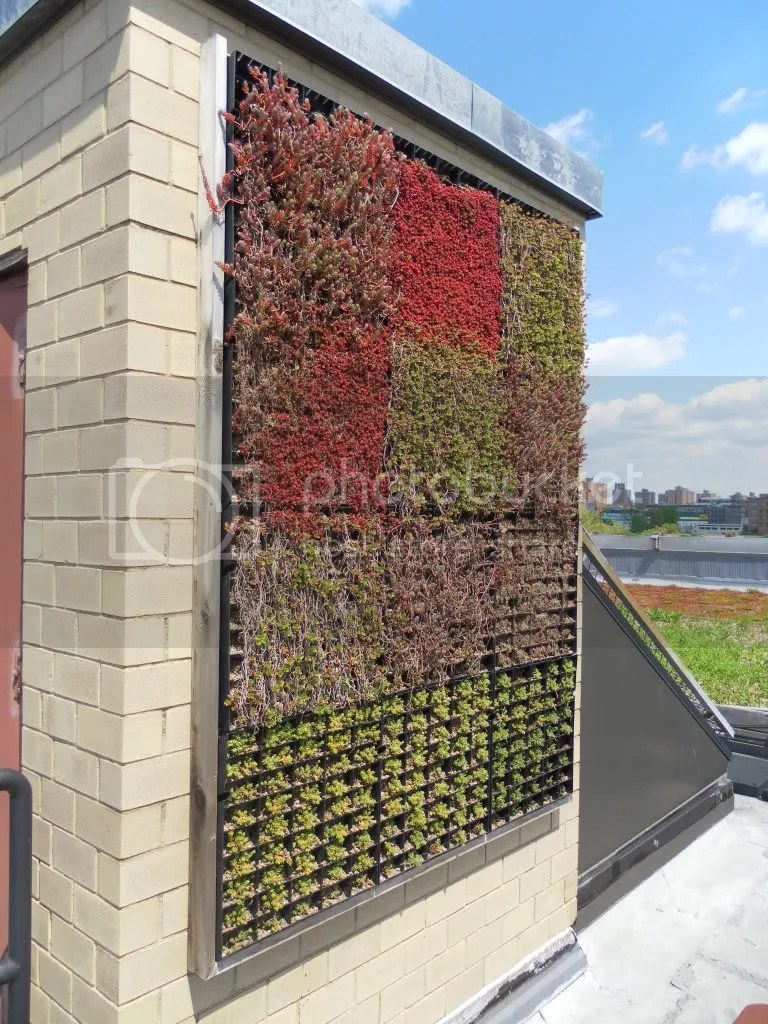 5-Boro Living Wall