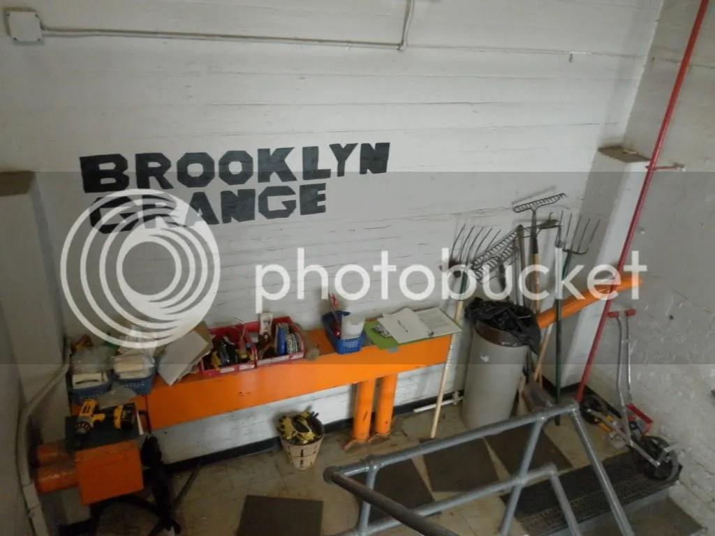 greenroof,fieldtrip,BrooklynGrange