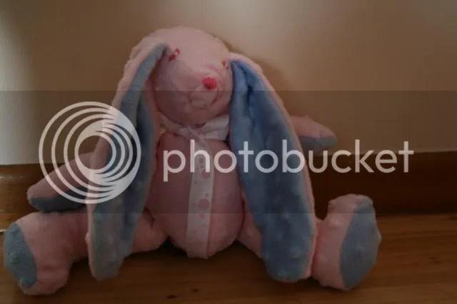 minky bunny piccy