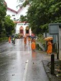 monks in the rain