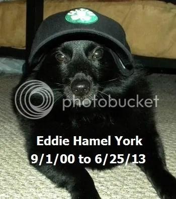 We miss you, Eddie!