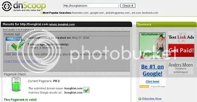 dnScoop 9 Hal Penting Tentang Website