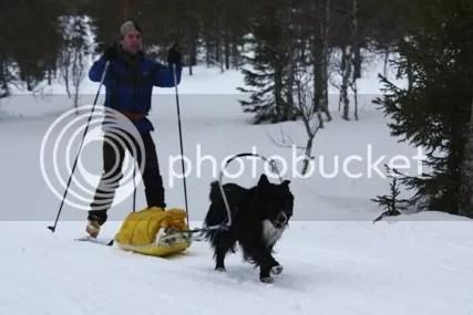 Biko og Claus