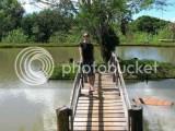 Marlene na ponte