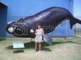 Observatório Baleia Franca