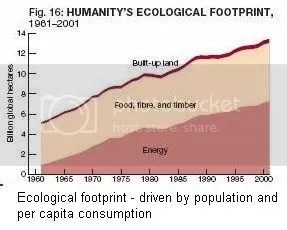 Growing footprint