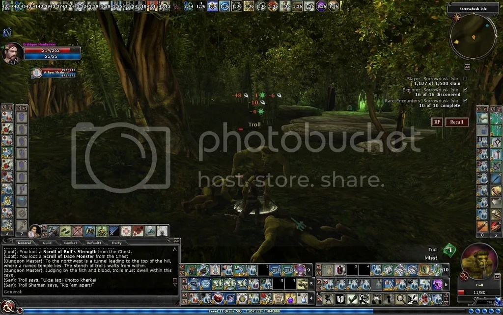 photo Playing whack a troll in Sorrowdusk Isle_zps4sq5tl1f.jpg