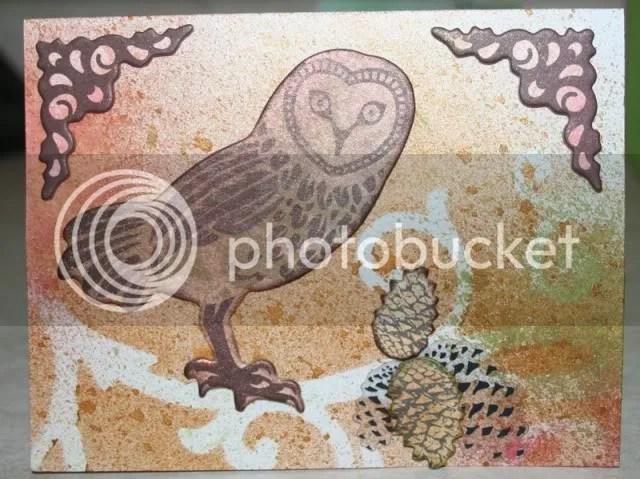 owl card