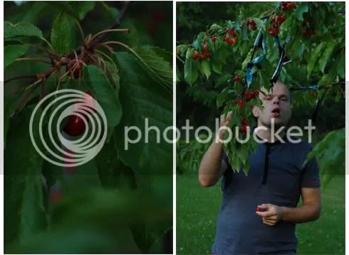 Andrei äter biggaroer