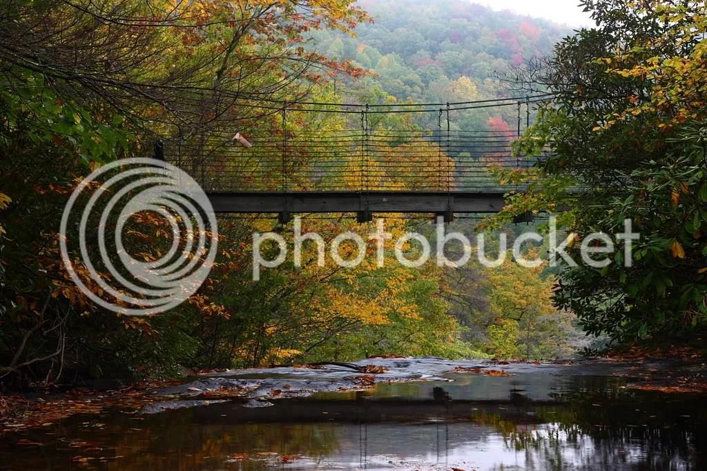 View of the Suspension Bridge over Raven Cliff Falls