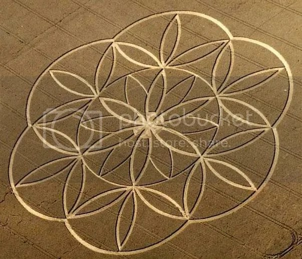 Floweroflifcecropcircle.jpg Flower of Life crop circle picture by jabeguy
