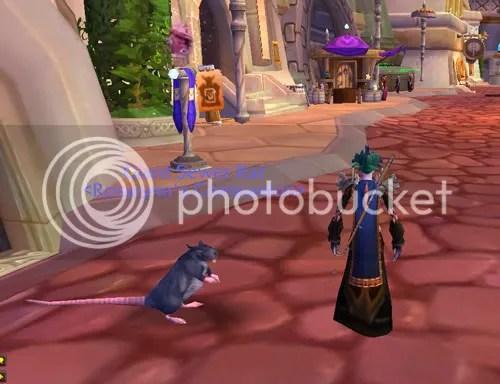 Giant Sewer Rat Pet