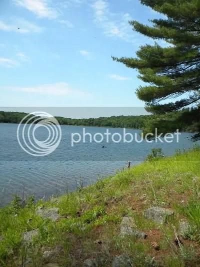Little Salmon Lake