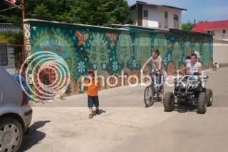 VIZINDEXPOZIIADEPICURNAERLIBER.jpg PICTURĂ PARIETALĂ ÎN BUCOVINA picture by simina2