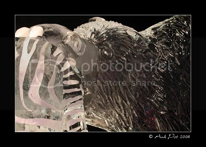 Log16-12-08-9.jpg picture by Knatop