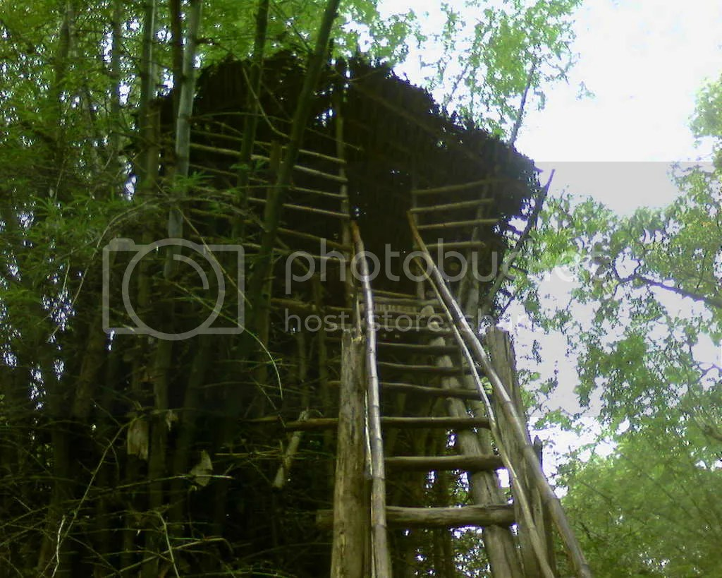 Tree Huts in Cauvery NisargDham