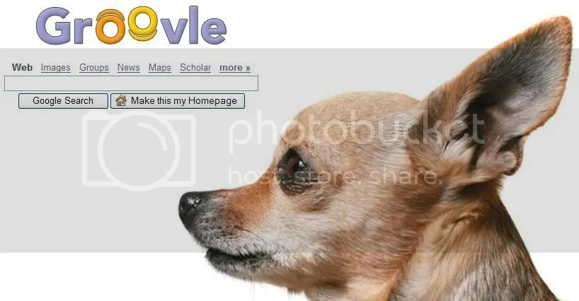 Groovle Chihuahua