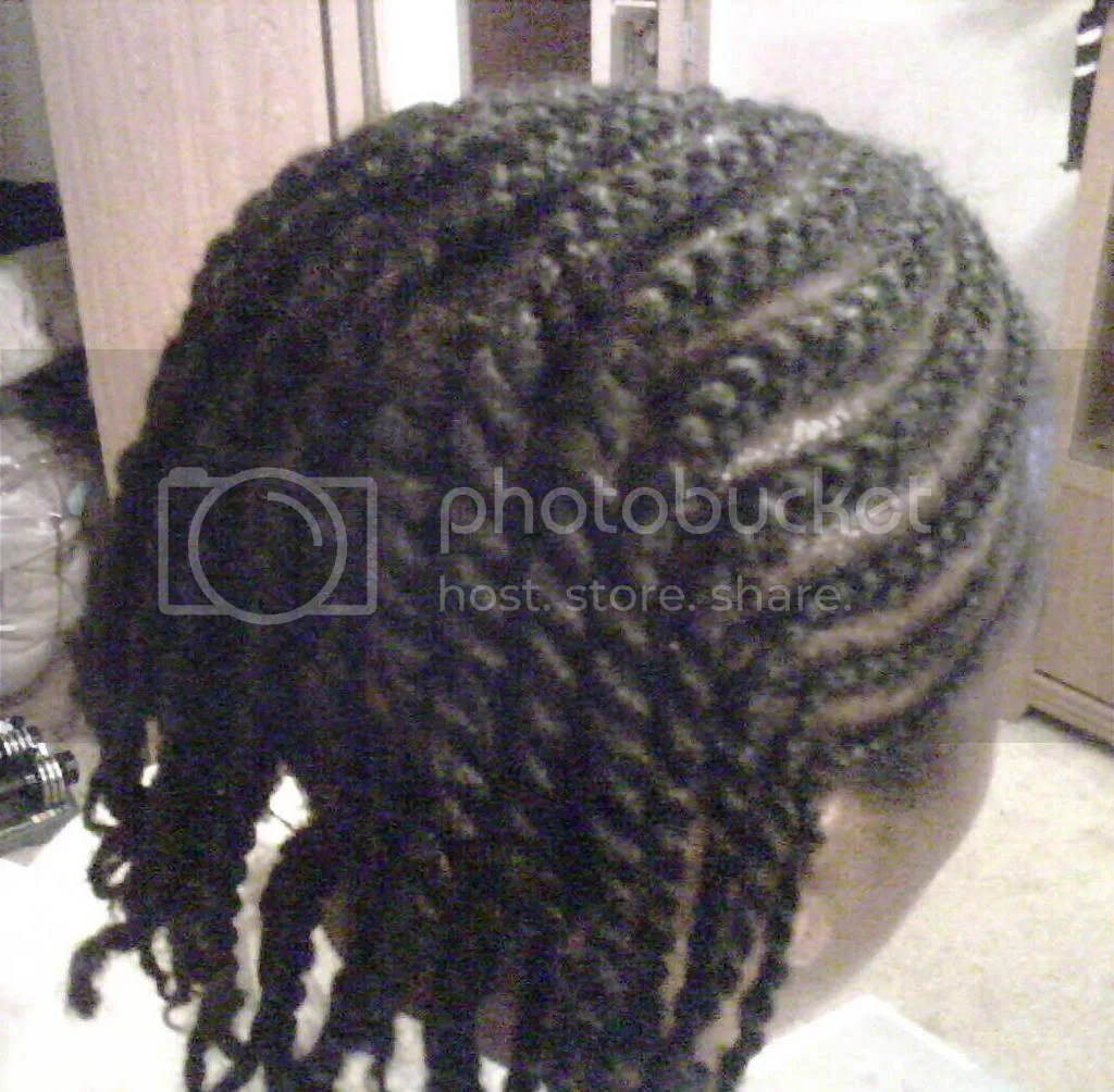 Cornrow/2 strand twist Pictures, Images and Photos