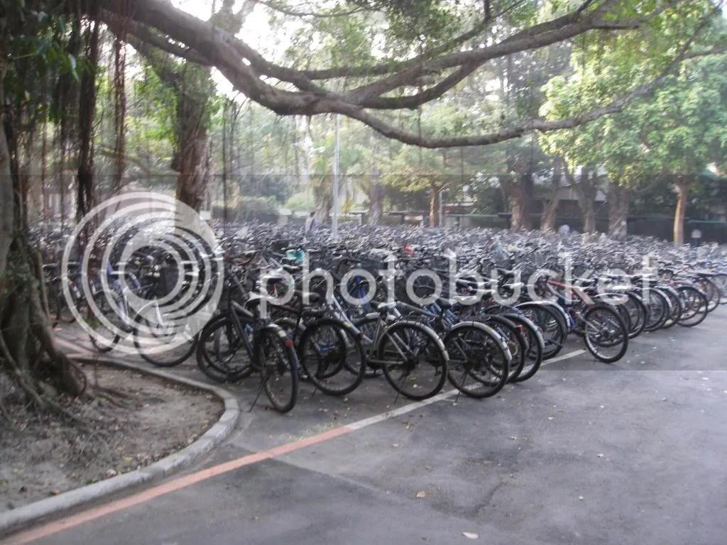 Bike parks o.o.. like lying all over the place!