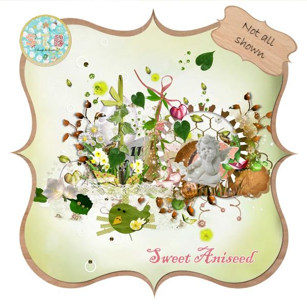 kit sweet aniseed