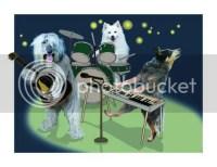 dogband.jpg