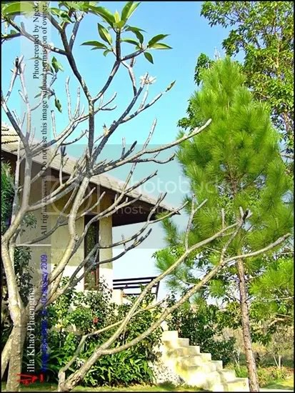 049-Villa-Khao-Phaeng-Ma.jpg picture by jade_ornament