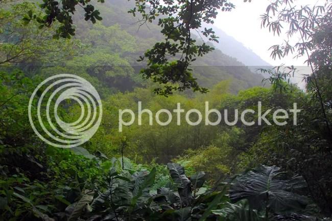photo HKG171.jpg