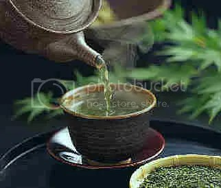 green-tea-cup.jpg picture by witch_of_endore