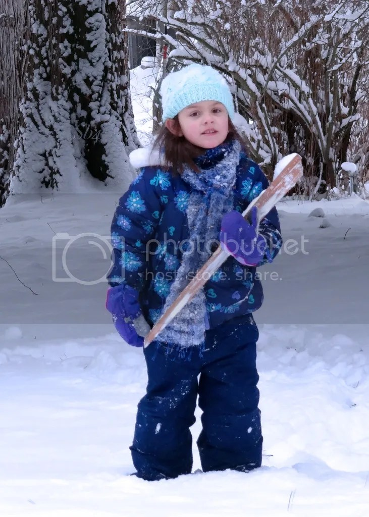 photo Winter Wonderland 3 WM_zpsj8j1n7zn.jpg