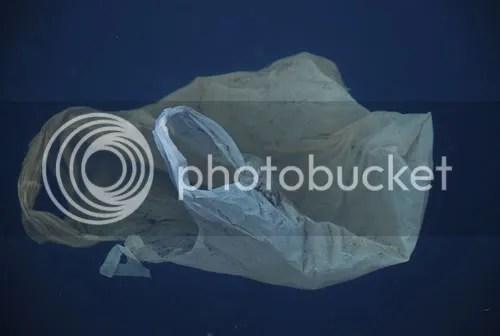 Sacola Plástica no Oceano