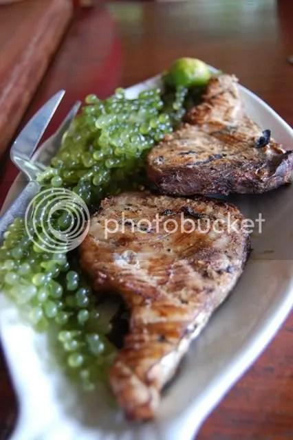 BADJAO SEAFRONT_grilled tuna