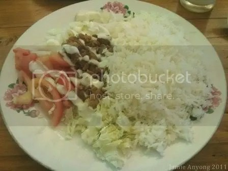 World Class Persian Kabab_chicken shawarma rice