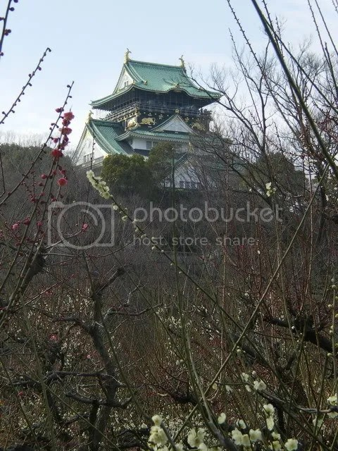 Osaka Castle and Plum Blossoms